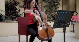 Cellist at The Clayfield