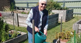 Growing food and friendships in the community garden